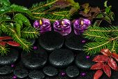 Winter Spa Concept Of Zen Basalt Stones With Drops, Lilac Candles And Evergreen Branches, Closeup