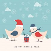 Cute couple of love birds with gift box on beautiful snowflakes and clouds decorated winter background for Merry Christmas celebrations.