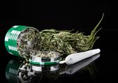 stock photo of blubber  - Dried cannabis plant - JPG