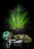 picture of blubber  - Dried cannabis plant - JPG