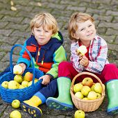 Two Adorable Little Twin Kids Eating Apples In Home's Garden, Outdoors