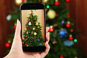Hand taking photo of Christmas tree by smartphone