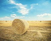 hay-roll on meadow against sunset background