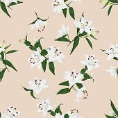Lilies almond seamless background