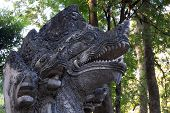 Thailand, Chiang Mai, Umong Temple ( Wat Umong ), Old Religious Staues