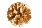 Gold Plated Pine Cone Macro Isolated