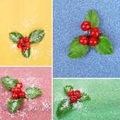 Leaves of mistletoe with berries collage