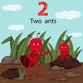Illustrator of number two with ants