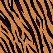 Animal background pattern - tiger skin texture