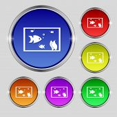 picture of fish icon  - Aquarium Fish in water icon sign - JPG