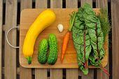 image of marrow  - Fresh vegetables - JPG