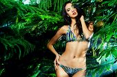 image of tropical plants  - Beautiful sexy woman in bikini among tropical plants - JPG