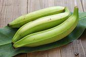stock photo of plantain  - plantain banana - JPG