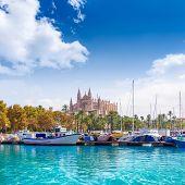 pic of marina  - Palma de Mallorca port marina in Majorca with Cathedral church Balearic Islands - JPG