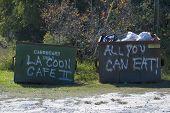Coon Dumpsters de café