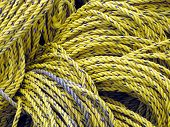 Yellow and Blue Rope