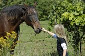image of horse riding  - Young girl petting friendly horse in field - JPG