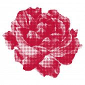 stock photo of lithographic  - Vector rose halftone - JPG