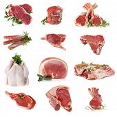 Cuts of raw meat, isolated on white.  Includes beef, lamb, pork and chicken.