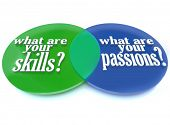 A Venn diagram of overlapping circles analyzing what are your skills and passions to help you determ