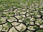 Life vs death - Global Warming
