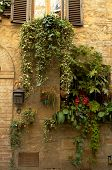 Doorway Garden, Italian Village