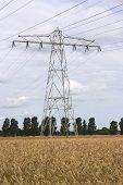 Power Pylon In Wheat