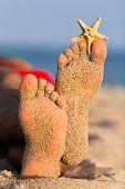Sandy feet with starfish.