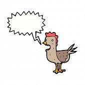 clucking hen cartoon