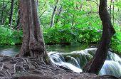 Fluxo e bela cachoeira