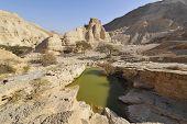 Zohar Fortress In Desert.