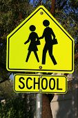 School Crossing Road Sign