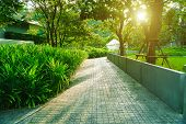 Cement Walkway In The Garden, Beautiful Path In A Park, The Walkway Is Made Of Concrete In The Garde poster