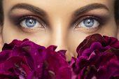 Beautiful Human Eyes Close-up. Young Woman Blue Eyes Macro Shoot. Macro Closeup Eye With Peony Flowe poster