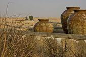 Arabian Landscape