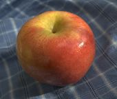 Apple On Picnic Napkin