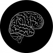 Vector brain icon. Black and white. Simply change. In my portfolio there is version 4 in 1.