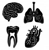 Vector medical icons. Black and white. Simply change. Other medical icons you can see in my portfoli