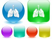 Lungs. Vector interface element.