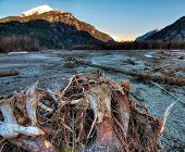 Riverside Tree Stump With Mountains At Sunrise