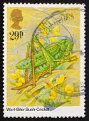 Postage stamp GB 1984 Wart-Biter Bush-Cricket