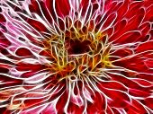 Abstract Fractal Flower