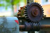 Old Worm Gear
