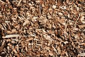 Seamless tiling woodchips
