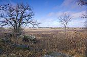 Pipestone Prairie Expanse