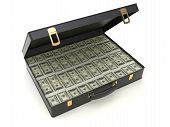 Case With Moneys