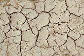 Grunge Mud Cracks Texture