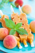 Ice Cream With Apricot