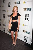 LOS ANGELES - 8 de JUL: Emily Wickersham llega en