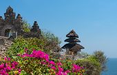 picture of dua  - Pura Luhur Uluwatu Temple Bali on cliffs above blue tropical sea with pink flowers on front  - JPG